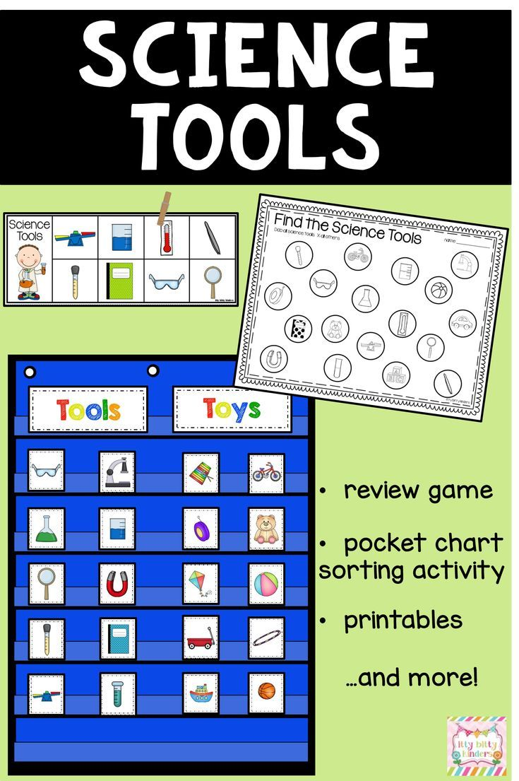 Science Tools And Safety Kindergarten Back To School Science Tools Kindergarten Science Science Worksheets [ 1105 x 735 Pixel ]