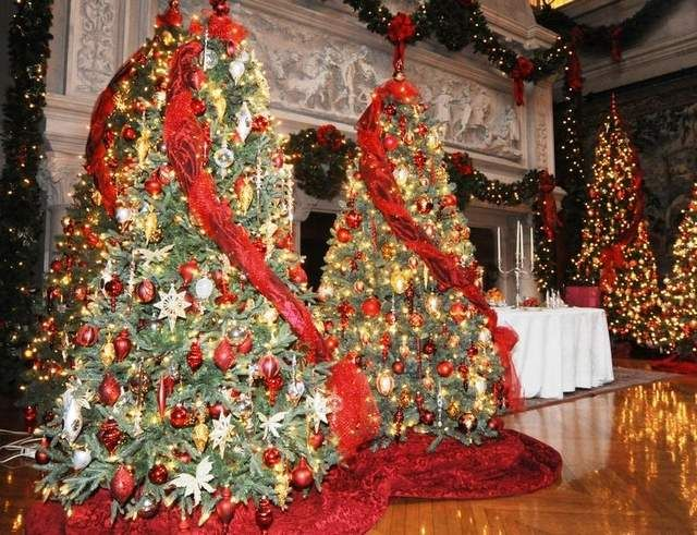 Christmas Trees at the Biltmore Estate in Asheville, NC -- I love ...