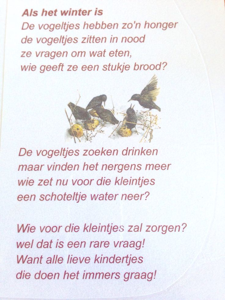 Versje over vogels in de winter