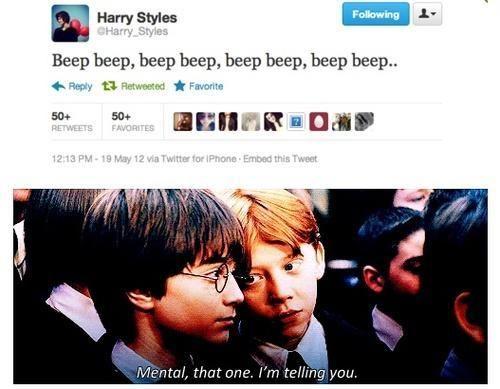 One Direction Harry Potter Meme | Slapcaption.com