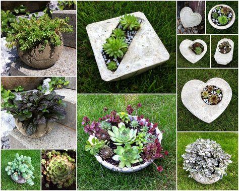 Kreative Mitbringsel aus Beton mit hübschen Herbstzauber oder schönem Hauswurz