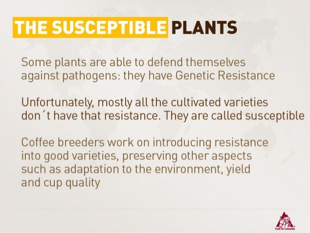 The Susceptible Plants