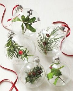 GREAT IDEA! Glass-ball ornaments with sprigs of holly, bayberry, and evergreens. Remove the cap from an ornament, and carefully place a small piece of trimmed greenery inside. To prevent condensation from forming, leave the cap off for 24 hours before replacing it. Thread ribbon through the top loop, knot, and hang from the tree.