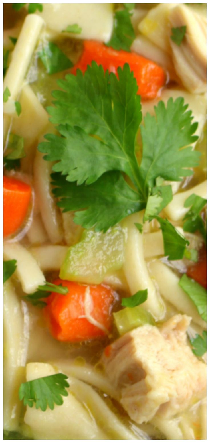 Hearty Chicken Double Noodle Soup ~ Loaded with both wide and narrow egg noodles, along with carrots, celery and thick chunks of chicken.