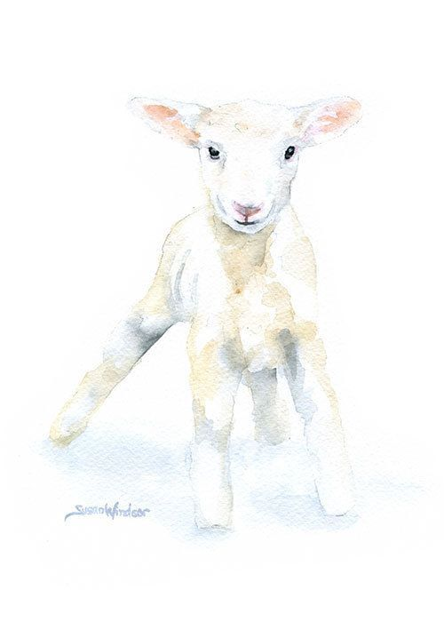 Baby Lamb Watercolor Painting - Large Print - 16 x 20 - Poster