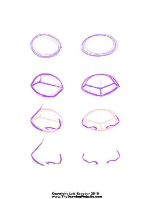Cartoon Nose FormulasThe Drawing Website | Die Zei…