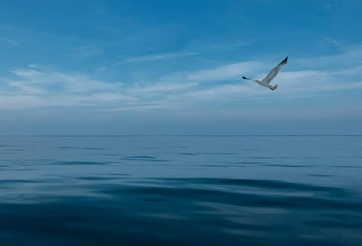 The ocean . Northern  Italy Fuji X20