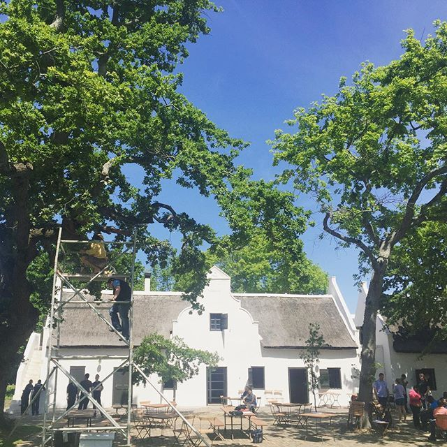 A lot of activity happening on the #spierwerf in preparation of the opening of @thehoghouse. Can you spot Farmer Angus moving his bee hive on the left? - See more at: http://iconosquare.com/viewer.php#/detail/1091894350580525294_400921769