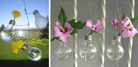 Reusing Lightbulbs: as planters or mini terrariums