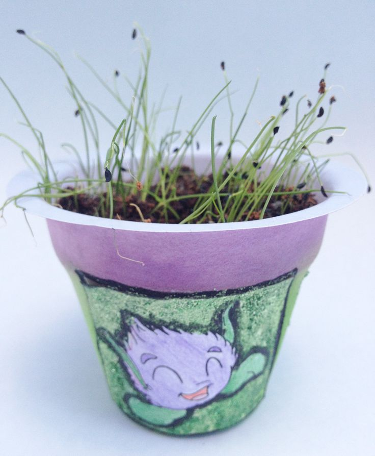 Growing Herbs With Children Is Great Fun. Herbs Arouse Childrenu0027s Curiosity  And Interest As They Stimulate The Senses. Handy Herbs Mini Kit For Kids.