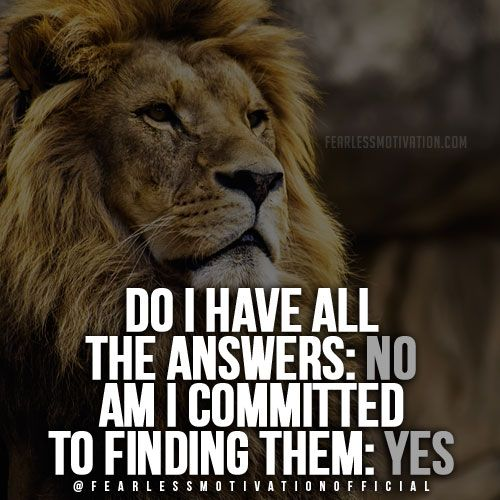 Inspirational Courage Quotes: 30 Of The Best Lion Quotes In Pictures