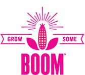 Free untreated non-GMO popcorn seeds to plant while supplies last