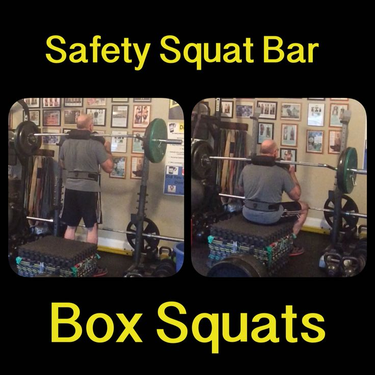 Safety squat bar box squats this allows me to train