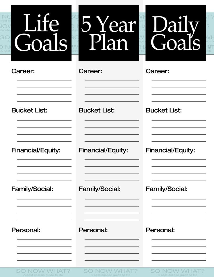 The 3 steps to a 5 year plan filing goal and journal for This is your life template