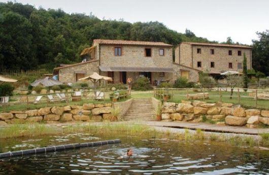 Monterotondo - grosses Toskana Landhaus mit 3 Hektaren Palmen und Oliven