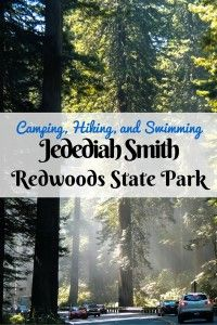 Jedediah Smith Redwoods Park is one of the gems of the redwoods forest. Here are some tips for making the most of your visit.