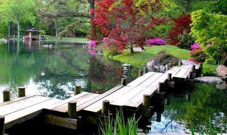 Этот японский дизайн сада включает в себя несколько различных стилей. Деревянная кладка вокруг основного озера позволяет перейти на другой берег. Красиво обрезанные деревья и кустарники, придают са...
