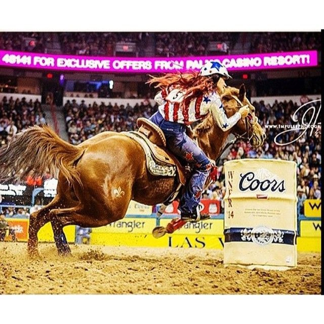 347 Best Images About Barrel Racing And Pole Bending On