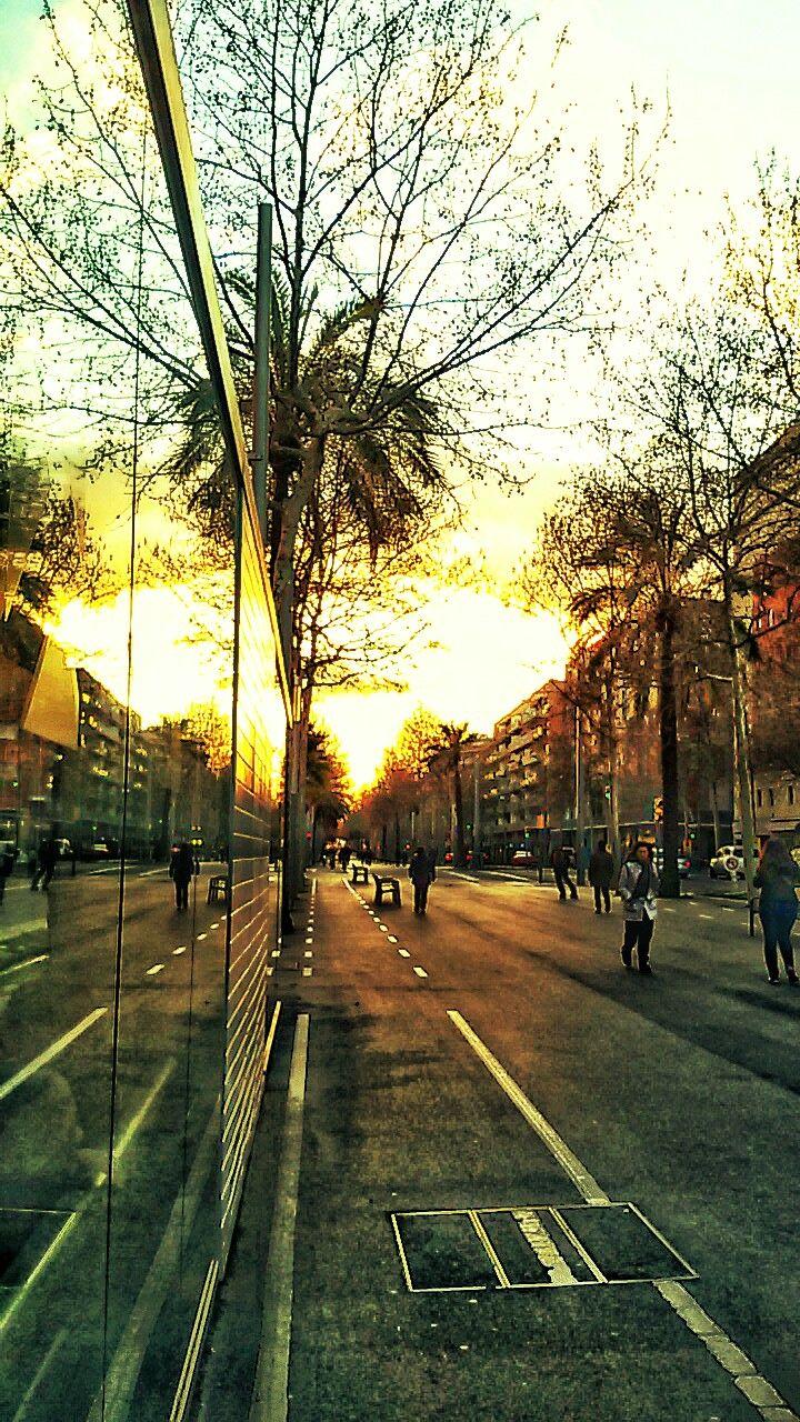 25/03/2015 Diagonal, Barcelona, Street by Luz Divina Balihar #barcelona #diagonal #poblenou #sun #sky #light #atardecer #sunset