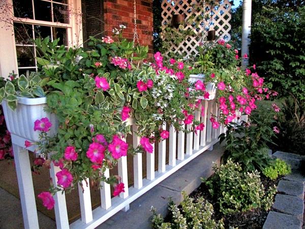 pretty window boxes: Garden Ideas, Pretty Window, Pretty Flower, Flowers Garden, Flower Boxes, Window Boxes, Yard Ideas