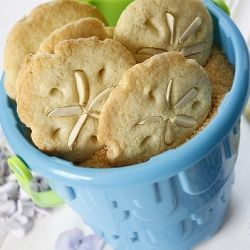 Sand Dollar Cookies!  I used this recipe and it was great!  These were the party favors at our wedding which combined beach/ocean theme with a mountain/pine theme.