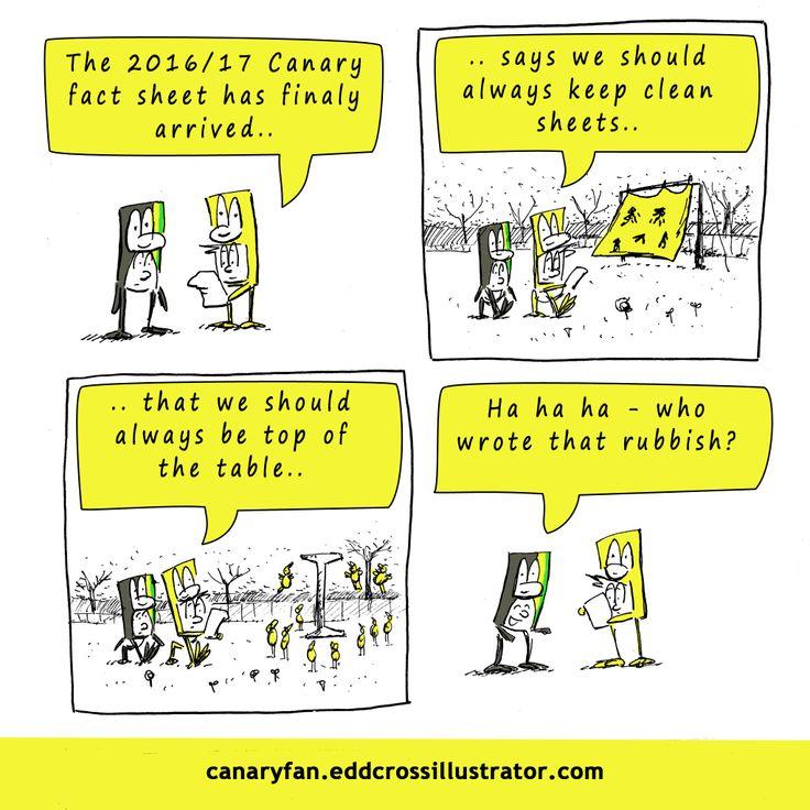 The Canary Fact Sheet Cartoon (Norwich Vs Brighton)