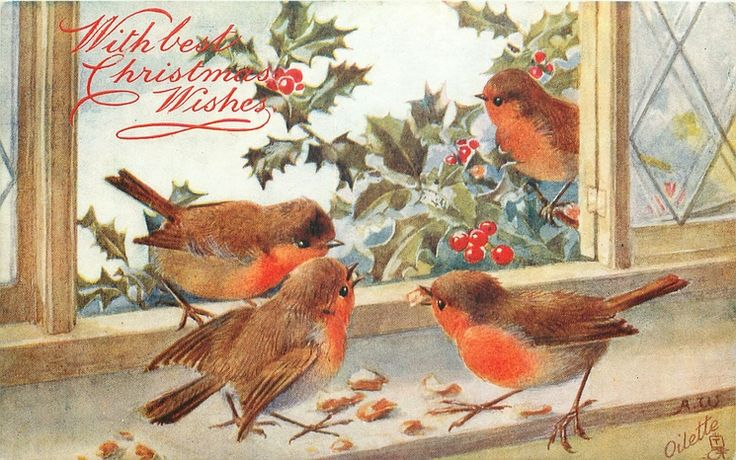 With best Christmas Wishes ~ robins geting a Christmas treat :)