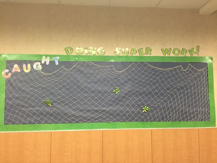 Caught doing super work. Turtle bulletin board. Under the sea. Fishing net & clothes pins.