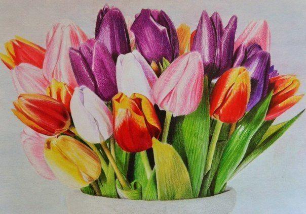 Рисунок цветными карандашами. Идея для творчества... фото #1