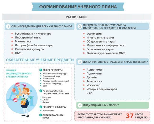 ФГОС - коллекция: Инфографика: учебный план