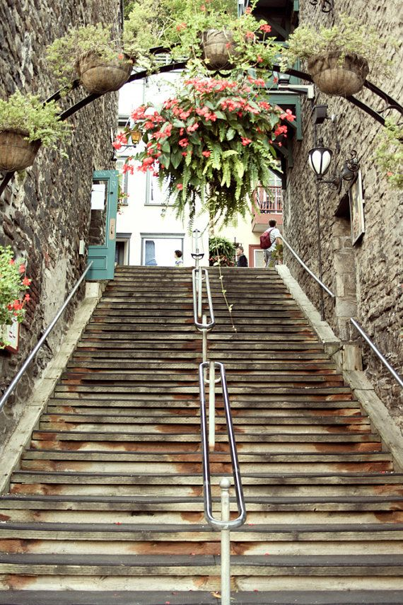 Photograph Of An Old Quebec City Rusted Gray Orange Staircase Steps Hanging Green Pink With
