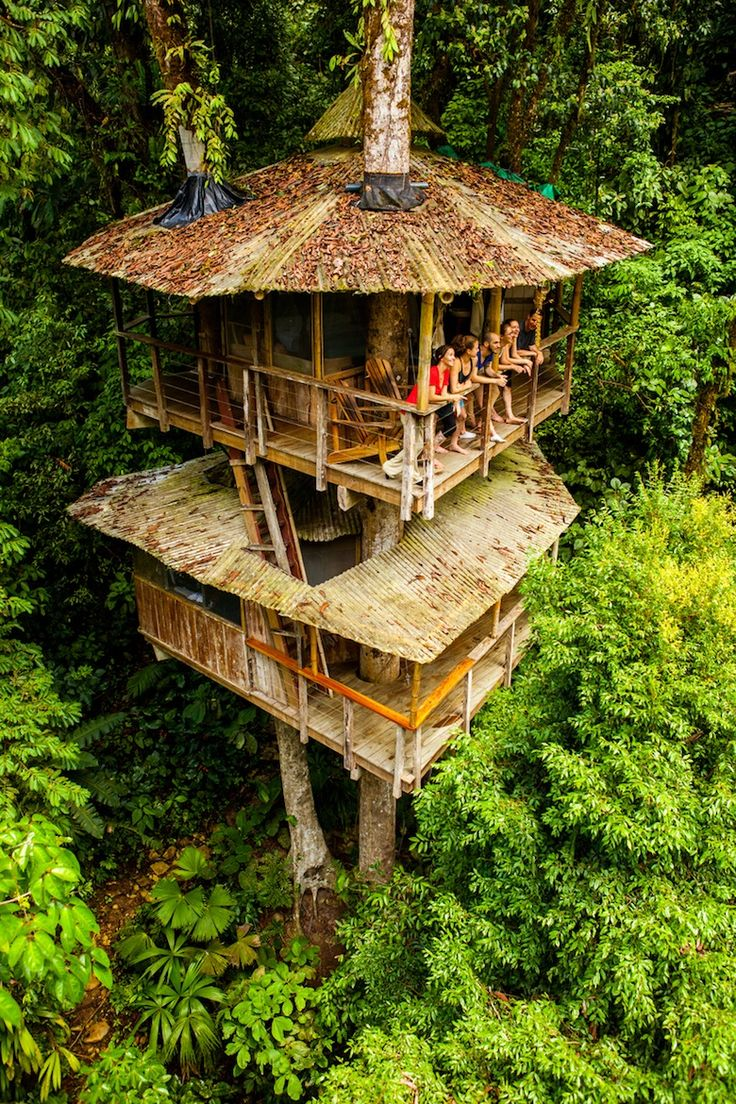 Best 25 indoor tree house ideas on pinterest tree house for Best backyard tree houses