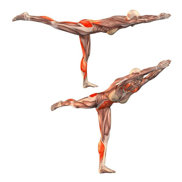 Warrior pose on left foot - Virabhadrasana straight left - Yoga Poses | YOGA.com