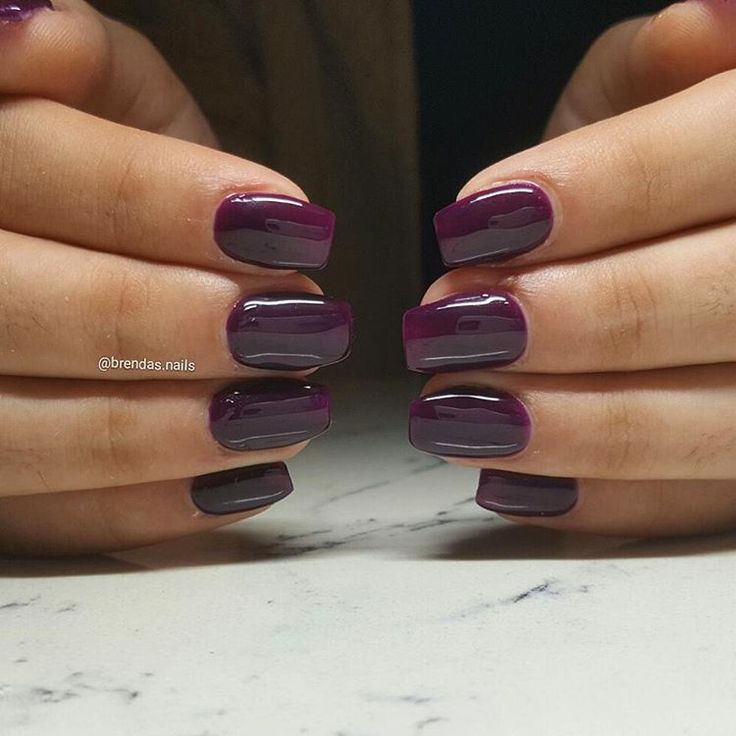 "Bio Seaweed Gel in ""Violet bloom"" by @brendas.nails"