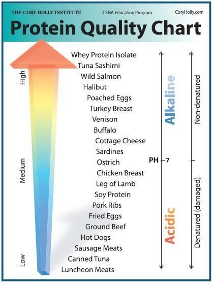 Protein Power!  A Chart of Protein Quality. How does your favorite source of protein measure up?