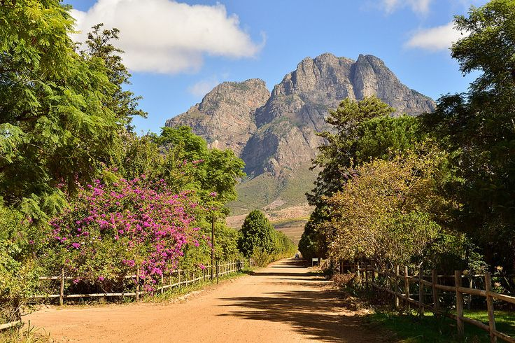 Rhodes Fruit Farm, Stellenbosch, Western Cape, South Africa | by South African Tourism