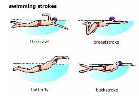 25+ best ideas about Different swimming strokes on Pinterest ...
