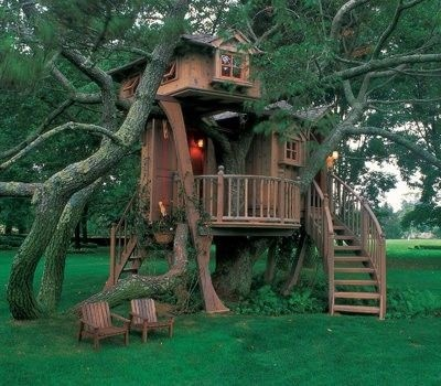 Nice Tree Houses 203 best tree houses images on pinterest | architecture