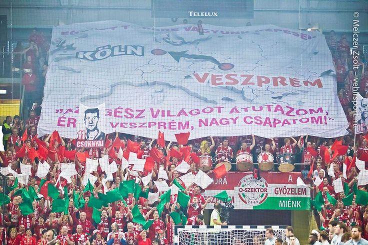 Veszprém fans, this is the way how people love Veszprém in Hungary, handball, match, MKB, Veszprém, Final4 , Cologne, EHF, CL   photo: Zsolt Melczer