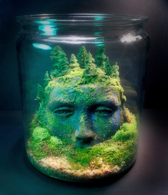 I like the terrarium in a jar idea, but I could do without the creepy face.