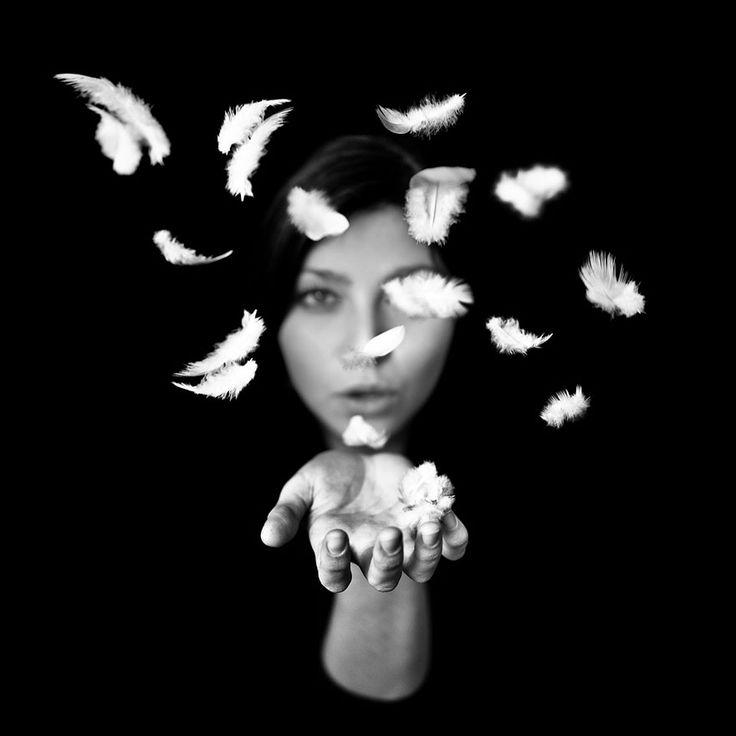 photos noir et blanc benoit courti plumes