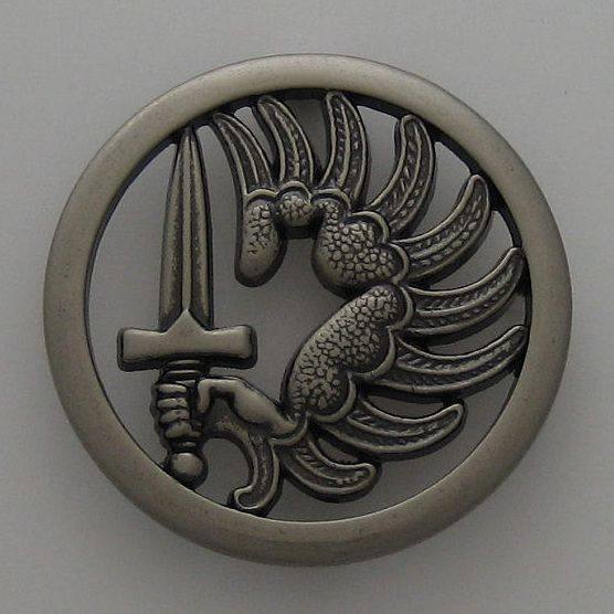 2 rep badge | Details about FRENCH FOREIGN LEGION - 2 REP BERET BADGE MATTE ... | F,fm.. | https://www.pinterest.com/pin/536491374340369493/