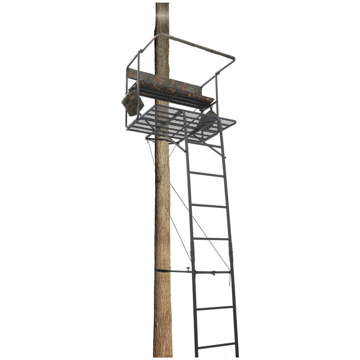 Guide Gear® 17 1/2 foot Deluxe 2-man Ladder Tree Stand for taking the boys or wife out with me.
