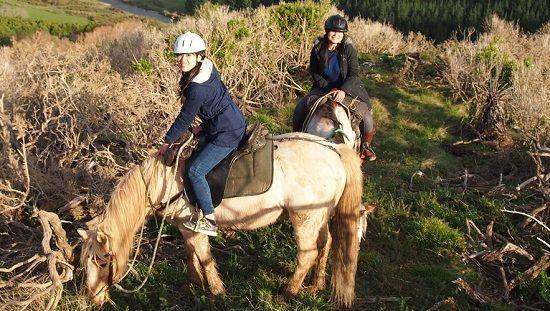 An Adventurous Horse Riding Day at Wainuiomata