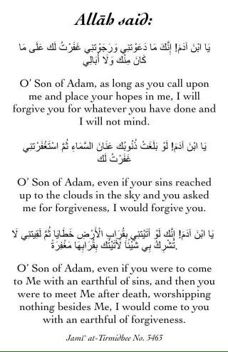 Amazing subhanallah ! ( reminder - here are the 4 conditions for forgiveness: recognizing our mistake, regretting it, asking forgiveness for it, promising not to do it ever again)