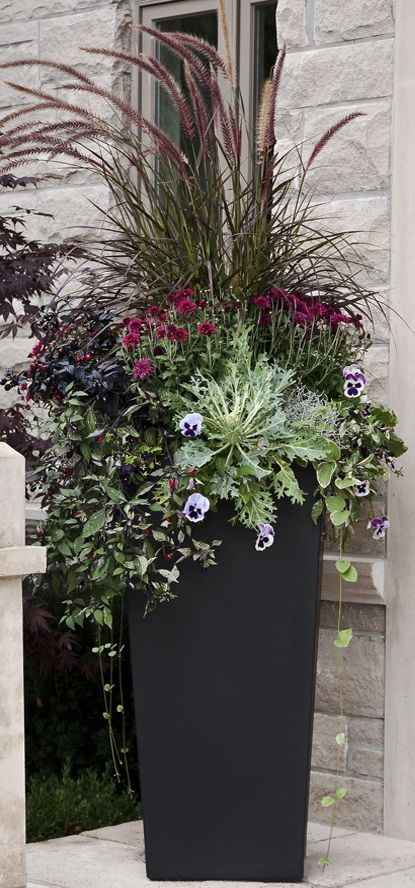 Gorgeous fall container garden with fountain grass, pansies, ornamental cabbage and mums.