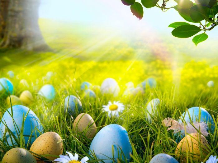 Easter eggs spring day