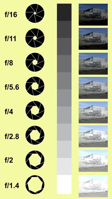 Photography BACK TO BASICS -=- Infographic, The Aperture of the Lens and How The Allowed Lighting Affects the Final Look of Your Photograph [Source: audster.wordpress.com]  :)