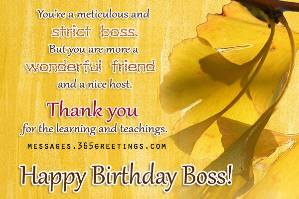 Birthday Wishes For Boss - Messages, Wordings and Gift Ideas