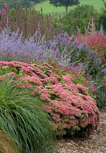 grass, sedum, perovskia, veronica, lots of late summer blooming perennials, beautiful colors and textures